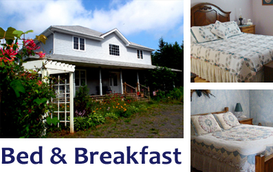 Blueberry Cove Bed & Breakfast