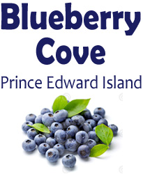 Logo: Blueberry Cove