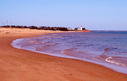 sea-shore